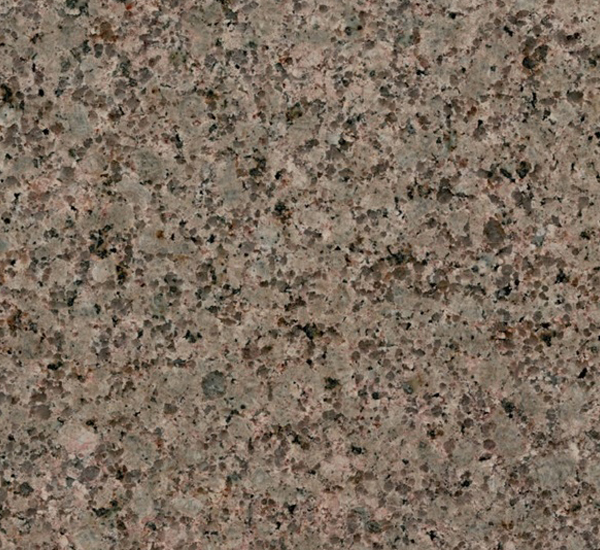 ... Granite Exporter from India : Indian Nosara Green Granite Suppliers